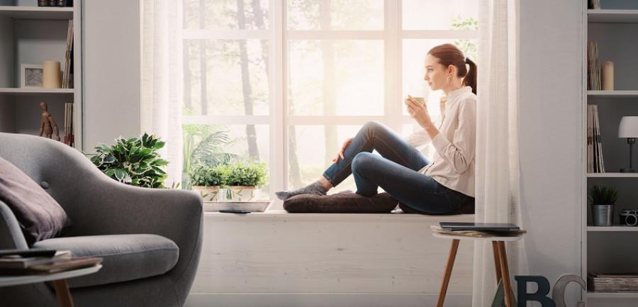 Rénovation ou construction : quel bois pour votre fenêtre?